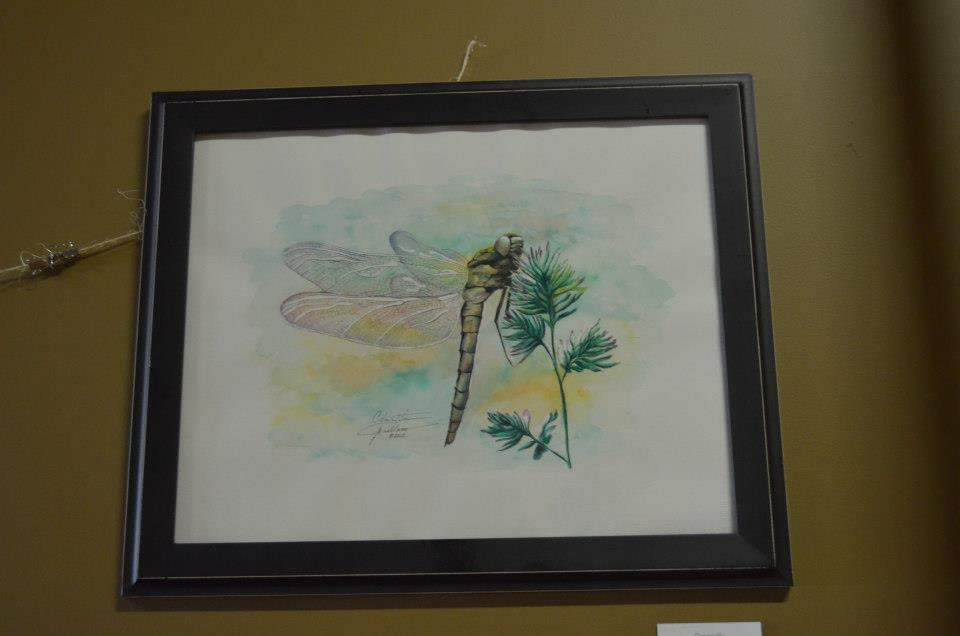 "Dragonfly Christina Arellano B[ugs]! Watercolor 16"" x 20"" 175"