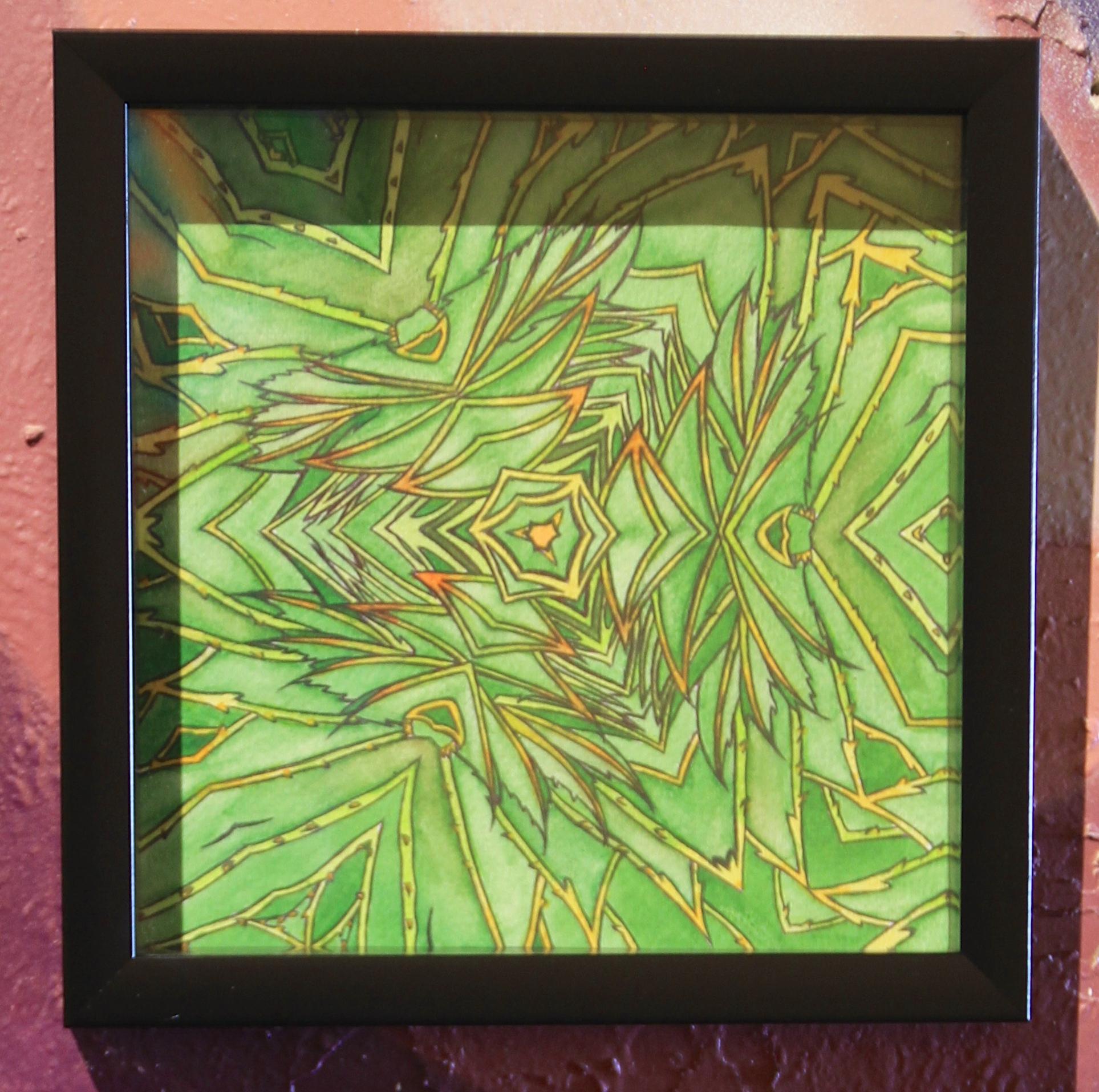 Geometria [3] Kroonaalwyn, Aloe polyphylla